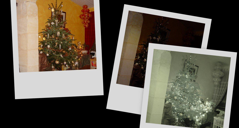 collage23.jpg